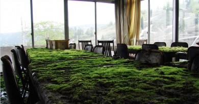 Top 10 abandoned Maya hotel in Japan