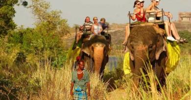 Sri Lanka Habarana elephant ride