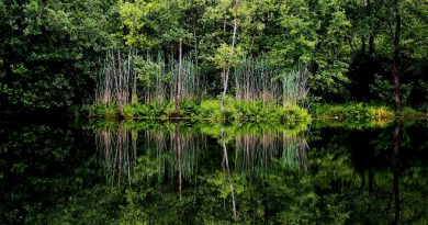 Serbia Raska Semetesko lake
