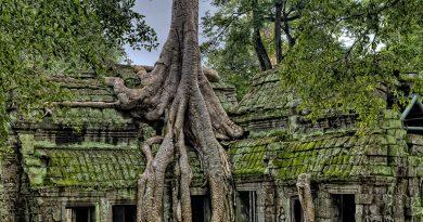 Cambodia ancient ruins