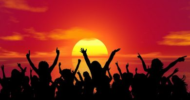 Celebration party sunset summer fun happy