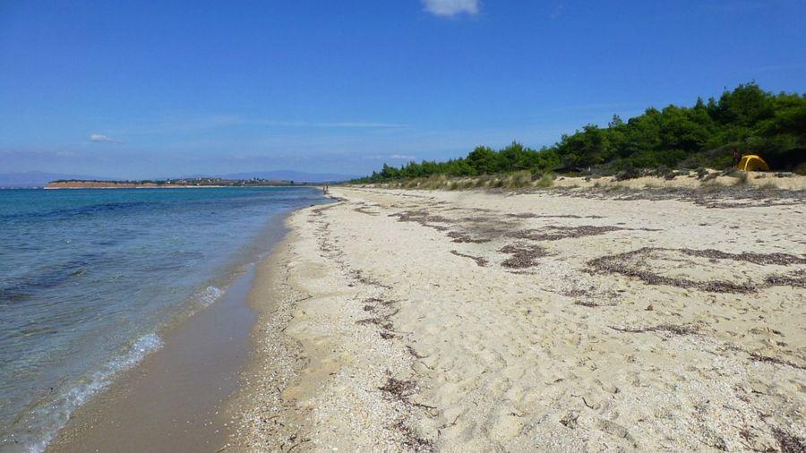 halkidiki kassandra stavronikita beach