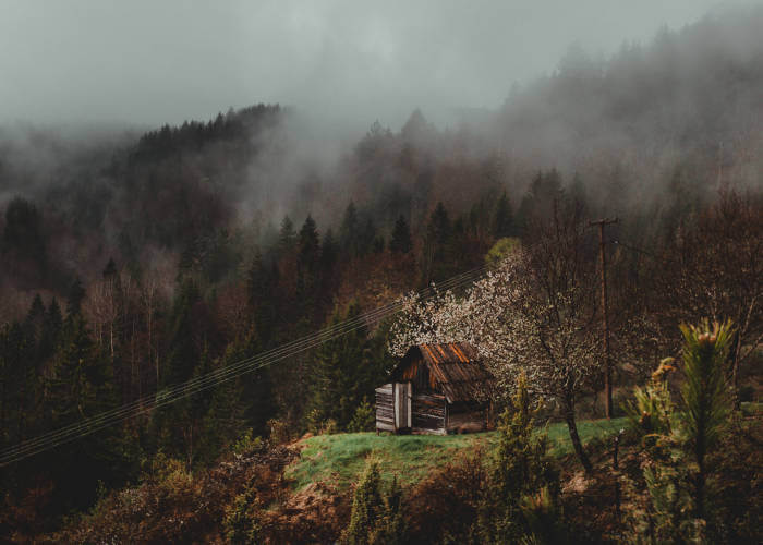 kucica planina magla tara