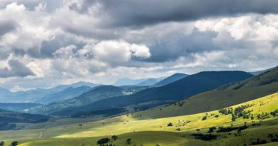zlatibor planina polja livada