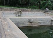 Sri Lanka Anuradhapura Kuttam Pokuna five headed cobra