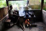 Bali fresh coffee