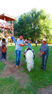 Serbia Subotica Palic ethno park Majkin salas horse riding