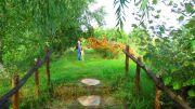 Serbia Subotica Palic Ethno park Majkin salas walking area